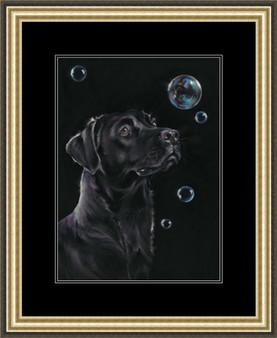 Medium framed image