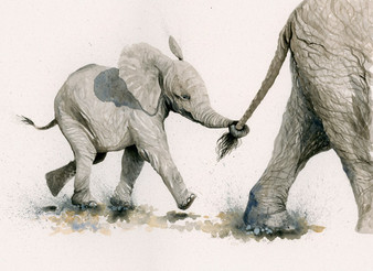 Elephant artwork by Kay Johns