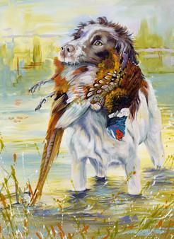 Springer dog artwork by Kay Johns
