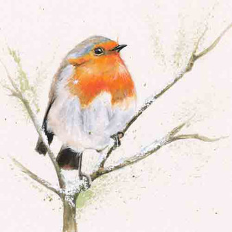 Red Robin artwork bu Kay Johns