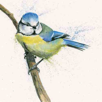 Blue Tit painting by Kay Johns