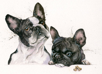 French Bull dogs, painting  by Kay johns