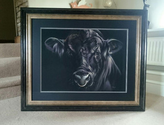 British wildlife artist Kay Johns, original artwork. Black Angus bull 'Prince of Darkness'