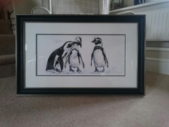 African penguin original framed in a black/gold frame with a double off white mount.