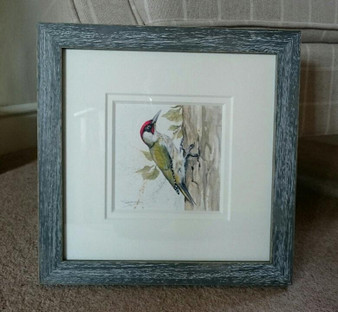 Green Woodpecker original, framed in a rustic grey with a double off white mount.
