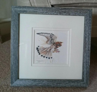 Kestrel original, framed in a rustic grey with a double off white mount.