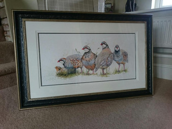 French and English Partridge original Artwork framed in Black/Gold