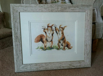 Red squirrel original, framed in a rustic light grey/white, with a double off white mount.