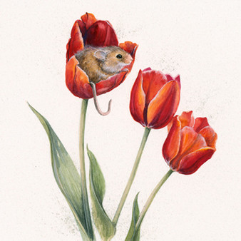 Original harvest mouse artwork by Kay Johns