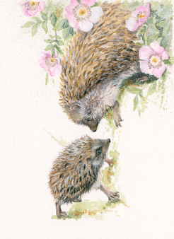Hedgehog original by Kay Johns