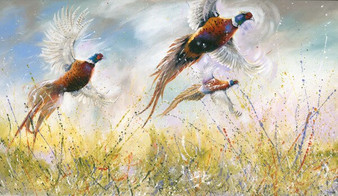 Flushing pheasants by Kay Johns