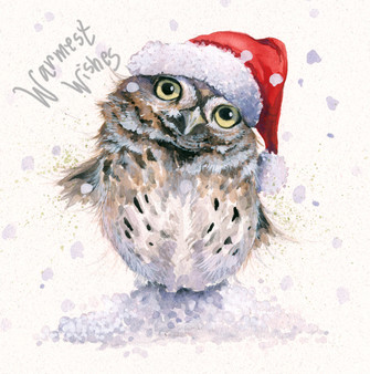 'Stay Cool' Christmas Greeting Card by Kay Johns