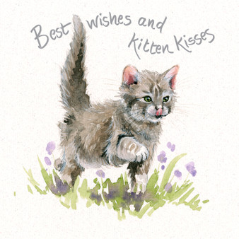 Kitten greeting card by Kay Johns - front view