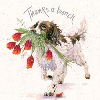 Thanks a Bunch- Springer dog card by Kay Johns - front view