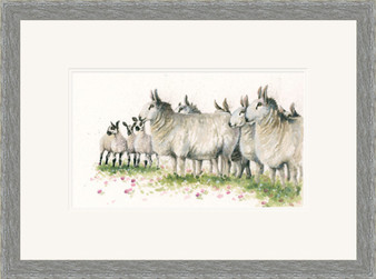 Border sheep by Kay Johns, small grey framed
