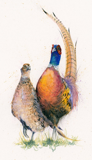 Pheasant painting 'Stepping Out' hand-embellished artwork by Kay Johns
