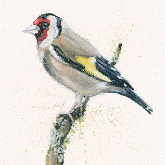 Goldfinch artwork, painting by Kay Johns. Each print his hand embellished by Kay