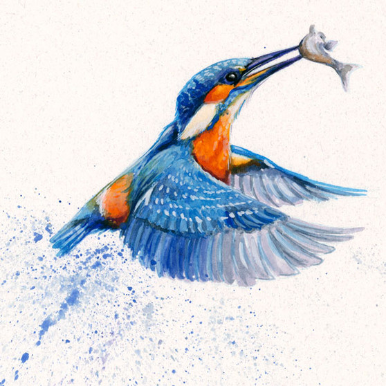 Kingfisher painting by Kay Johns