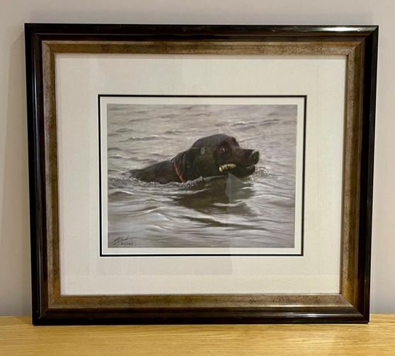 Framed Dog artwork by John Silvers