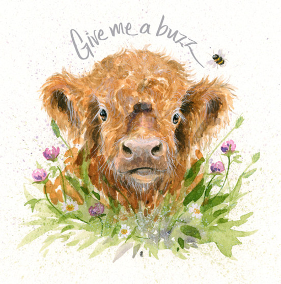Give Me a Buzz - Highland calf and bee card by Kay Johns - front view