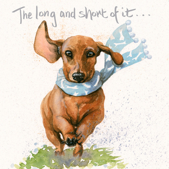 The long and short of it- Sausage dog card by Kay Johns - front view