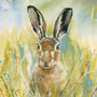 I'm All Ears, hare artwork by Kay Johns