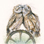 Original cuddling little owls by Kay Johns