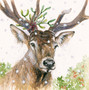 Stag hand-embellished artwork by Kay Johns