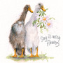 Indian running ducks greeting card by Kay Johns - front view