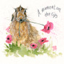 Hare greeting card artwork by Kay Johns - front view