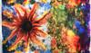 Lola - Sunflower Paintball