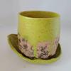 ReadHead Pottery Small Avocado Planter and Dish