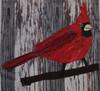 Cardinal Collage Kit (December 2020)