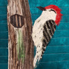 Red Headed Woodpecker Collage Kit (March 2021)
