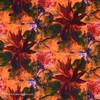Water Lily Five Yard Bundle