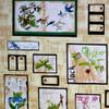 Botanical Garden Five Yard Bundle