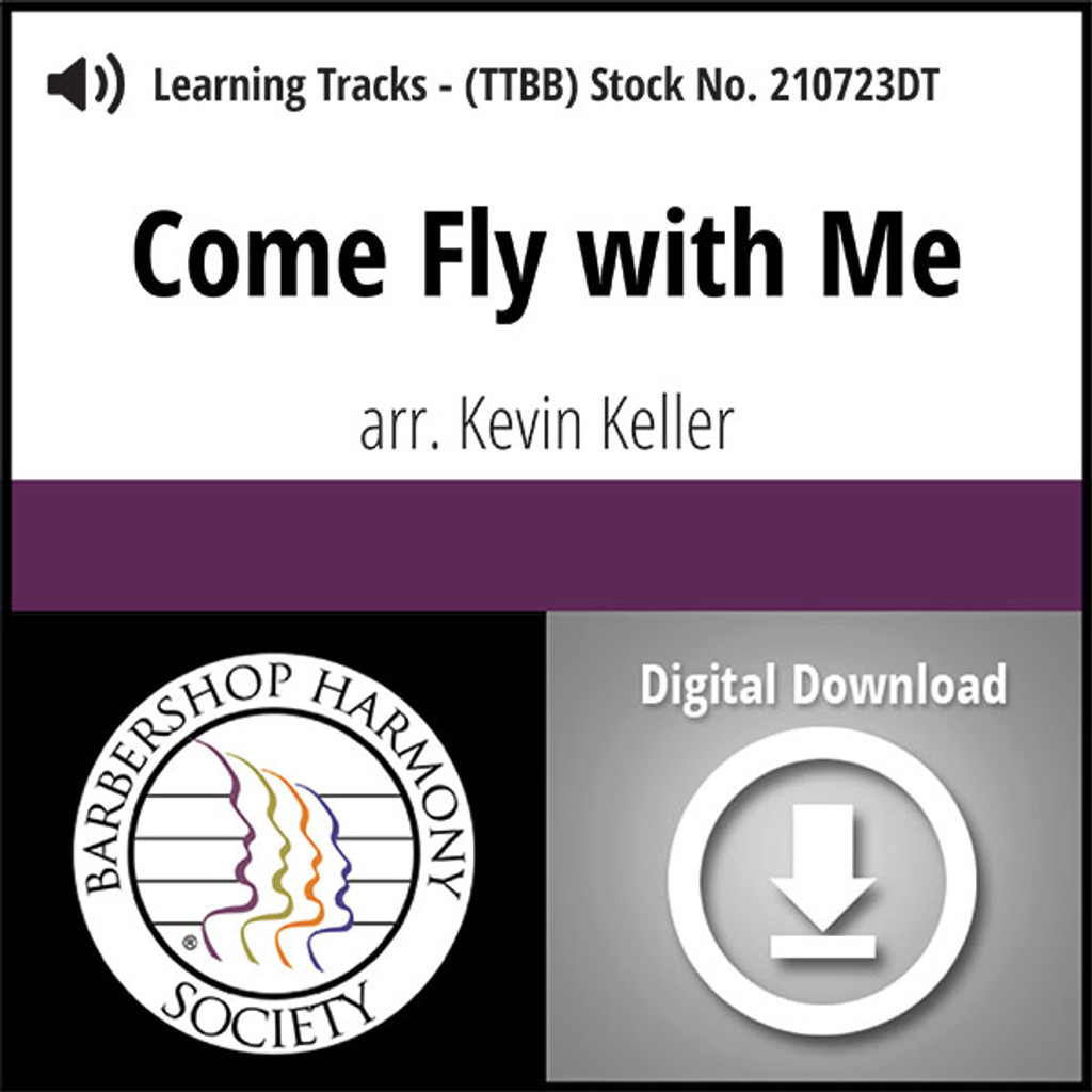 learn to fly download mp3
