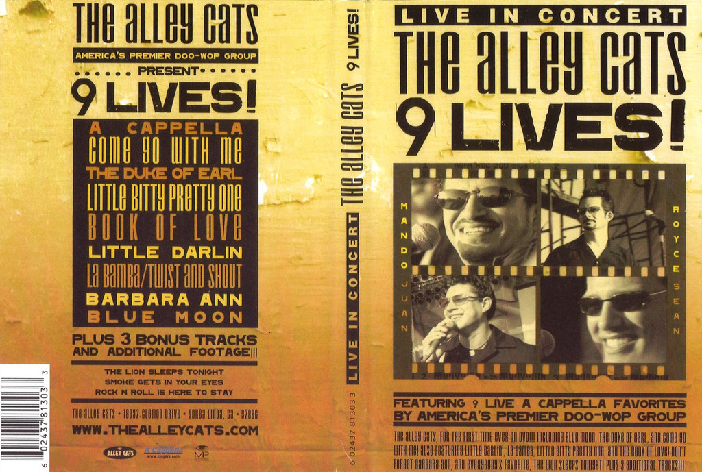 9 Lives Alley Cats DVD