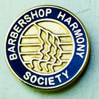Membership Lapel Pin
