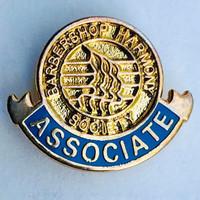 Associate Lapel Pin
