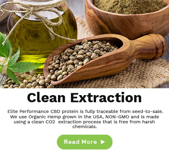 clean extraction cbd protein