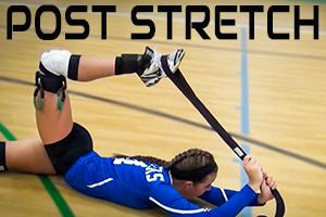 vb-post-stretch-download-thumbnail.jpg