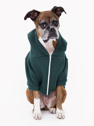Flex Fleece Dog Zip Hoodie (Forest)