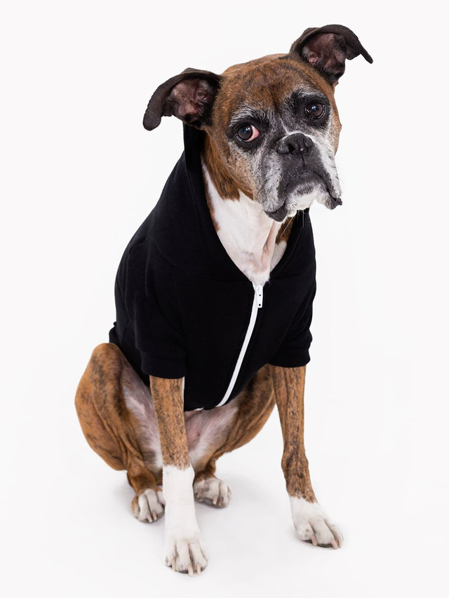 Flex Fleece Dog Zip Hoodie (Black)