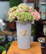 Kew Dorset Medium