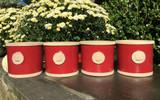 Kew Chelsea Round Herb Pot