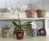 Kew Orchid Pot