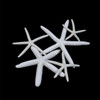 White Finger Star Fish (many sizes)  set of 10 stars