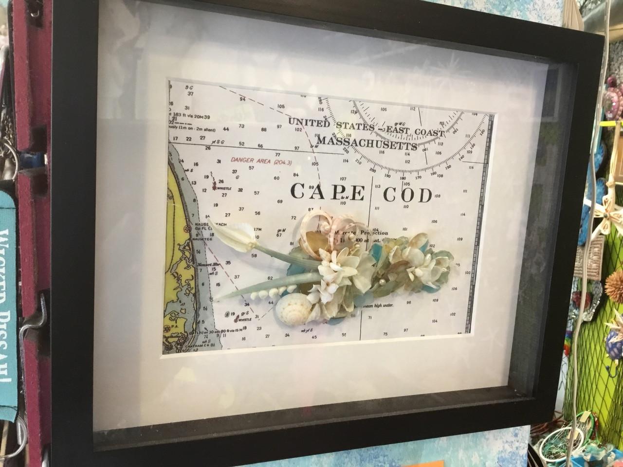Cape Cod Flower