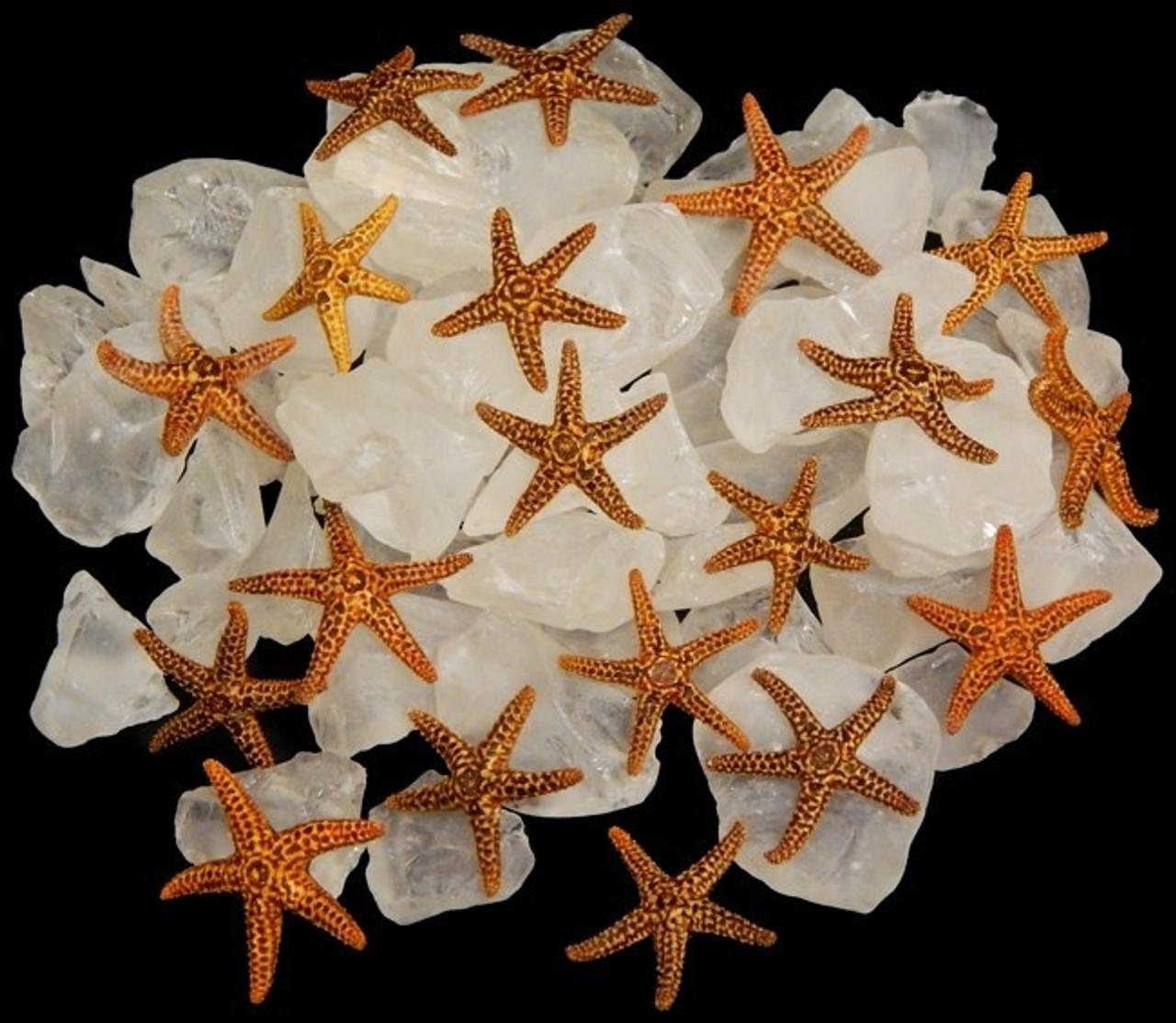 "Tiny Brown Star. 1/4"". Set of 50"